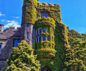 castle, hornby castle, and ivy image