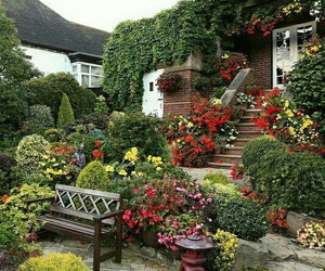 beautiful, flowers, and garden image