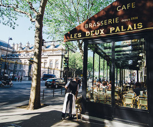 cafe, restaurant, and street photography image
