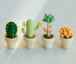 cactus and diy image