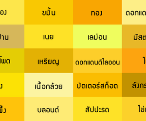 chart, color, and thai image