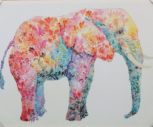 elephants and love image