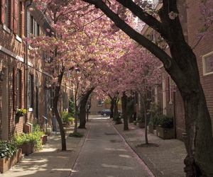pavement, spring, and sidewalk image