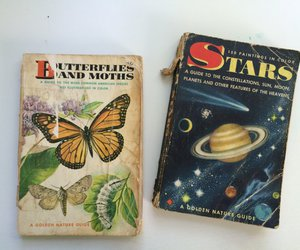 book, butterfly, and stars image