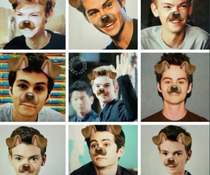 thomas brodie sangster, boys, and newt image