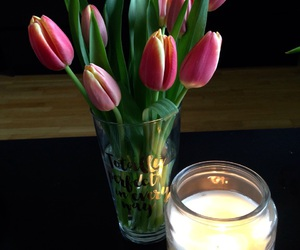 tulips, spring, and candle image