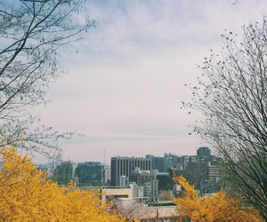 city, nature, and school image