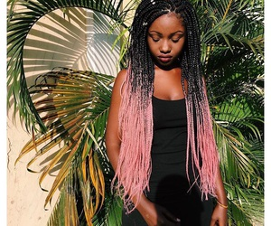 black beauty, pink braids, and congo image