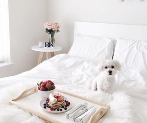 art, bed, and berries image