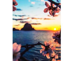 beach, carpe diem, and flowers image
