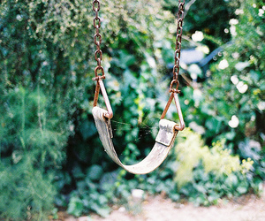 nature, photography, and swing image