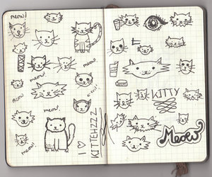 cat, journal, and cute image