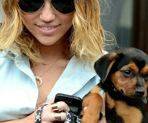 miley cyrus and dog image