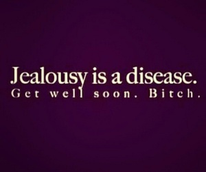 quote, jealousy, and bitch image