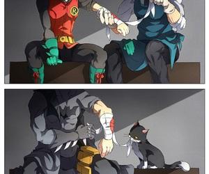 batman, dc comics, and cats image