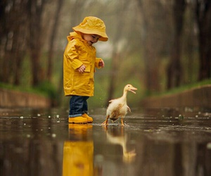 rain, duck, and yellow image
