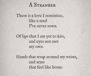 love, poem, and Lang Leav image