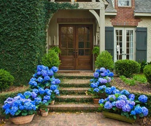 home and flowers image