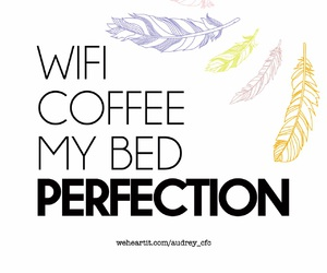 bed, coffee, and feather image