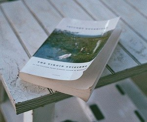 book, photography, and the virgin suicides image