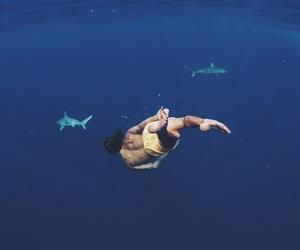 shark, boy, and ocean image