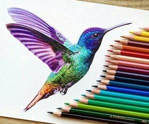 drawing, art, and bird image