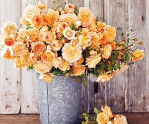 beauty, flowers, and nice image