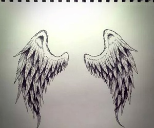wings, drawing, and angel image