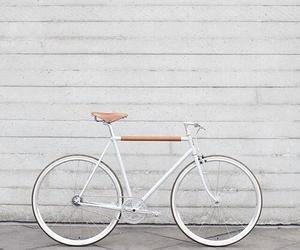 bike, bicycle, and white image
