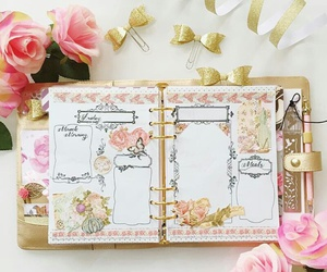 beautiful, diary, and girls image