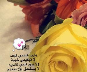 زهور, حُبْ, and ًورد image