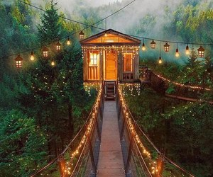 house, light, and forest image
