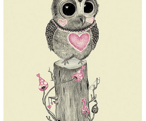 owl and heart image