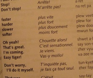 sex, translate, and french image