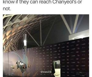 exo, exo meme, and kpop image