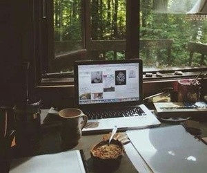 coffee, nature, and study image