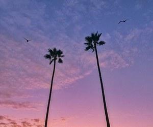 summer, beautiful, and tumblr image