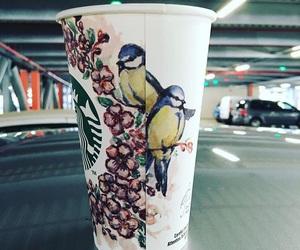 bird, coffee, and cars image