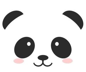 panda and sfondo image