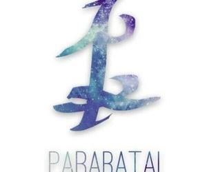 parabatai, cazadores de sombras, and shadowhunters image