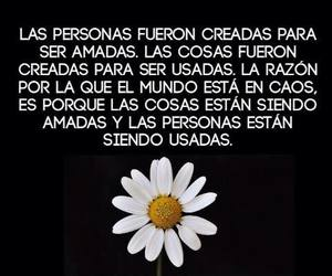 frases, tontos, and mujer image