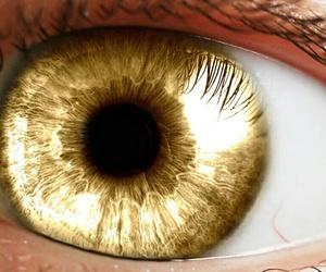 eye, eyes, and rasta image