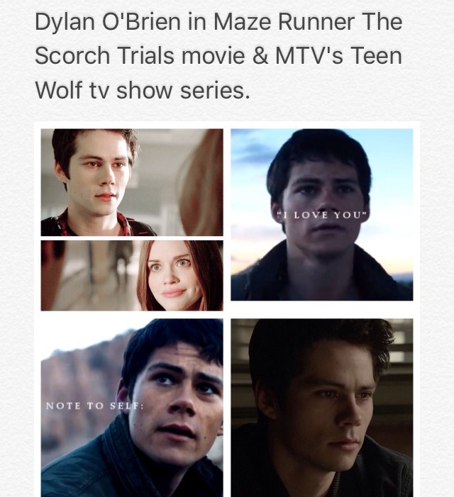 mtv, teen wolf, and the scorch trials image