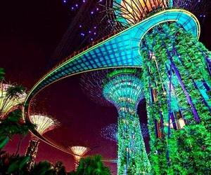 singapore and lights image