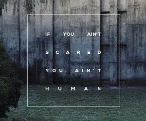 quote and human image
