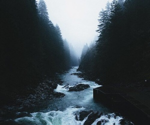 nature, grunge, and water image