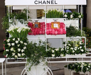 beautiful, chanel, and love image
