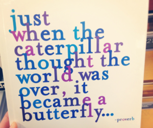 quote, butterfly, and over image