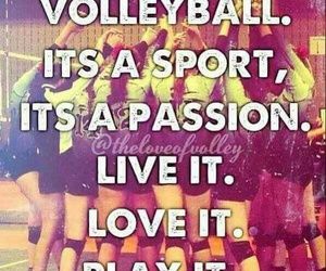 volleyball, live, and passion image