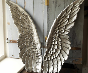 wings, angel, and Angel Wings image